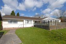 Bungalow for sale in Ruddy Lane, Dulverton...