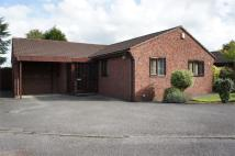 Detached Bungalow for sale in Twyford Close, Heanor...