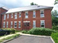Flat to rent in Chichester House...