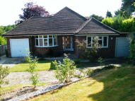 3 bed Bungalow in Whitebeam Way, Tadworth...