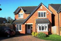 Detached property for sale in Pippin  Lane, Rossett