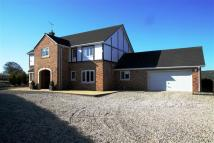 Detached home for sale in Platt Lane, Penyffordd