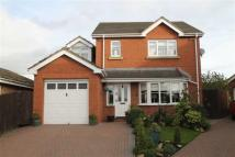 4 bed Detached house in Meadowview Court...