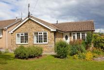 Detached Bungalow in West Pasture...