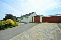 2 bed Detached Bungalow for sale in Glue Hill...