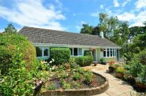 Detached Bungalow for sale in Durrant...