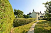 Cottage for sale in Thornhill, Stalbridge...