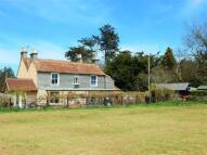 Detached house in Pidney, Hazelbury Bryan...
