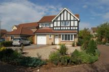 Detached house for sale in Chapel Field, Gamlingay...