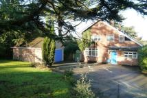 3 bedroom Detached property for sale in Halstead, Essex