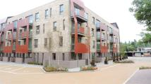 Apartment to rent in Bluebell House...