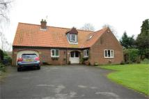 4 bedroom Detached Bungalow for sale in Parsonage Close...