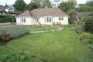 Garden and bungalow