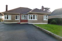 St Bungalow to rent