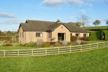 5 bed Equestrian Facility house for sale in Nantyglasdwr Lane, Cusop...