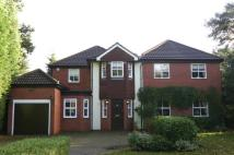 Detached home to rent in Radlett