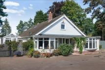 Horning Road Bungalow for sale