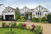 Detached Bungalow for sale in Radlett, Herts