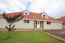 6 bedroom Detached house for sale in Redwood Avenue...