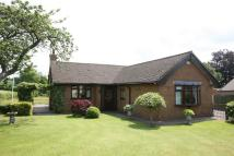 2 bedroom Bungalow in High Lane, Brown Edge...