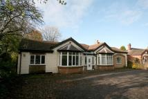 Detached Bungalow for sale in Elvedon House...