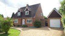4 bedroom Detached property to rent in Church Road, Beyton