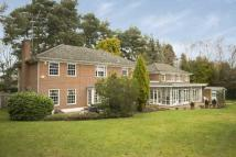 Detached property to rent in Oxshott, Surrey