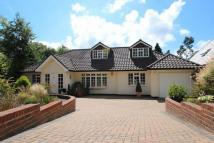 Chalet for sale in Cobham, Surrey