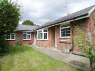 Semi-Detached Bungalow to rent in Stoke Road...