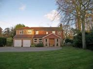Cobham Detached property to rent