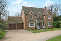 Detached house to rent in Buntingford, Herts