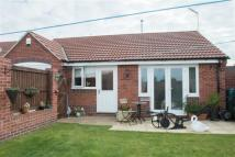 Detached Bungalow for sale in Mansfield Road, Skegby...
