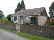Detached Bungalow in Coedypaen, NP4