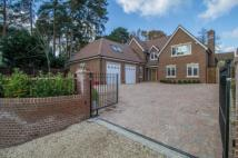 new house for sale in Ambleside Road...