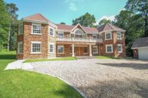 5 bedroom new home for sale in Tekels Park, Camberley...