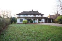 property to rent in Coxheath Road...