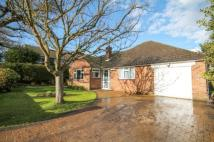 4 bedroom Bungalow in Little Vigo, Yateley...