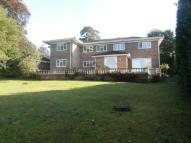 7 bed property to rent in Armitage Court, Ascot...
