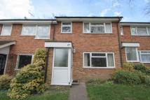 Cumberland Road Terraced property to rent