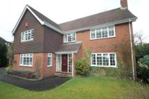 Detached house in Tekels Avenue, Camberley...