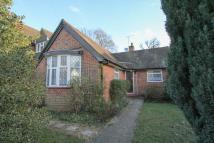 Detached Bungalow to rent in Woodlands Road, Camberley