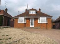 Bungalow to rent in Stevenage Road, Hitchin...