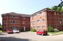 Flat to rent in Wynnstay Grove...