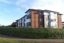 Gibbins Road Apartment to rent