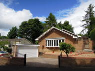 4 bedroom Detached Bungalow to rent in Valley Drive, Yarm, TS15