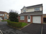 Detached house to rent in Black Diamond Way...