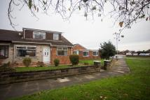 Semi-Detached Bungalow to rent in Rudston Close, TS17