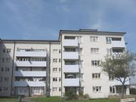 Flat to rent in Wharncliffe Road...