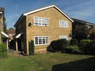 1 bed home in Foxglove Lane...