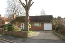 Bungalow for sale in Lodge Way, Grantham